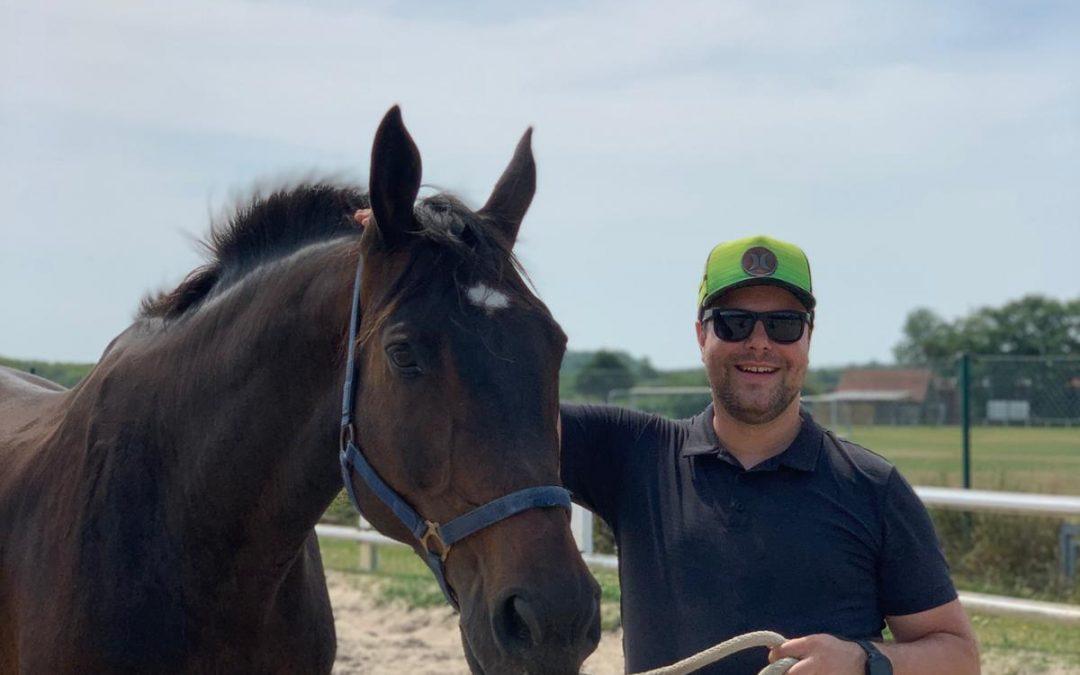 Was ich in 90 Minuten Coaching von einem Pferd gelernt habe