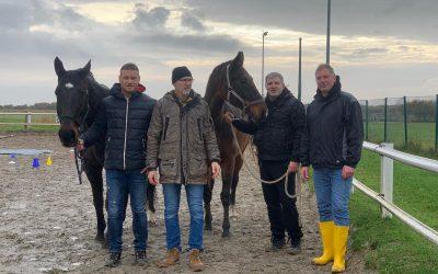 Teambuilding im Spiegel des Pferdes