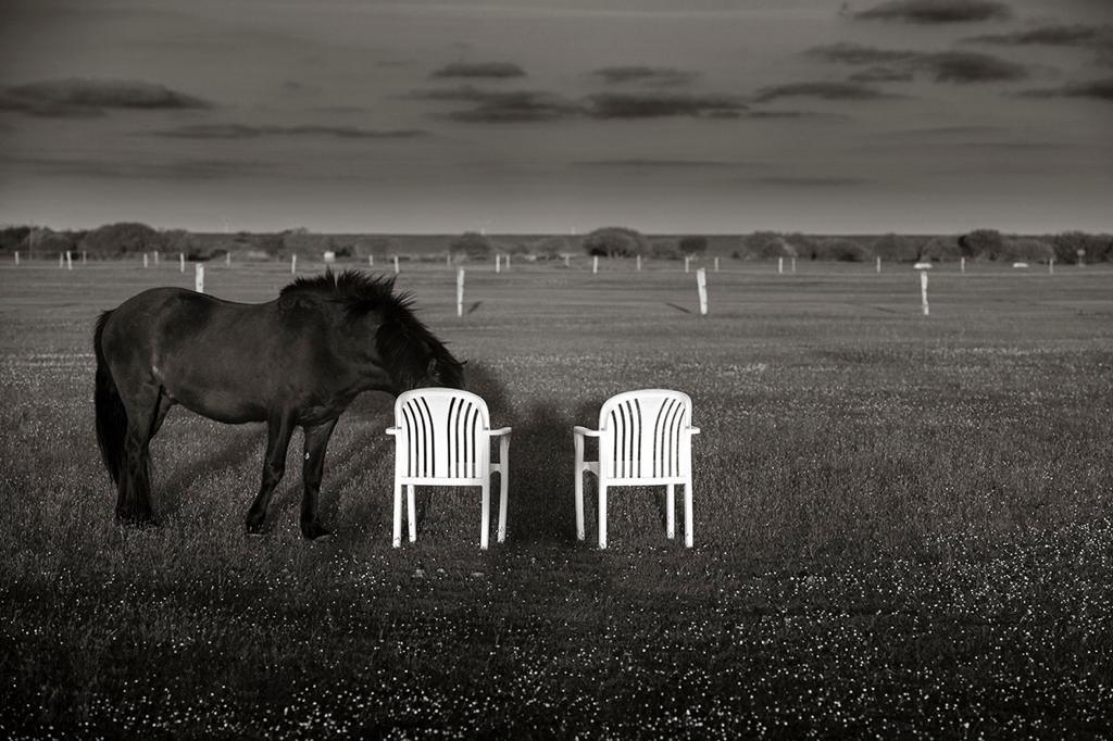 Corona_Langeoog_Sjutable Coaching_leere Stühle